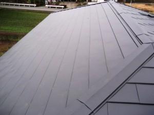 屋根葺き4-thumb-640x480